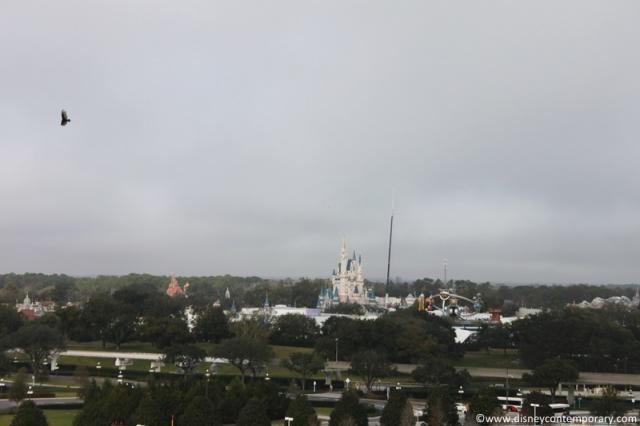 Magic Kingdom View from Tower
